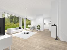 Havainnollinen kuva: Olohuone ja keittiö