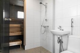 Kylpyhuoneessa wc, allas ja suihkuseinä