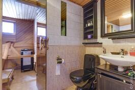 saunan yhteydessä kylpyhuone/ wc