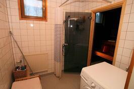 Ikkunallinen kylppäri, jossa suihkunurkkaus