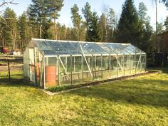 Kuva kasvihuoneesta