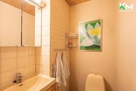 Myös alakerran erillinen wc on vaaleasävyinen.