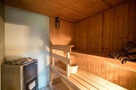 Sauna kellarikrs.