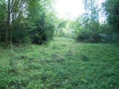 vanhaa peltoa, niittyä
