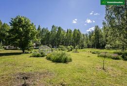 Vehreää puutarhaa on hoidettu luomuviljelyperiaattein.