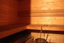 Saunassa on tilaa isommallekin porukallle L-mallisten lauteiden ansiosta