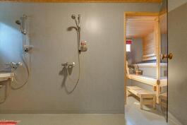 Kylpyhuone, kaksi suihkua