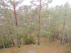 Parvekkeelta näkymät metsään