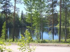 Tontin ja järven välissä on tie