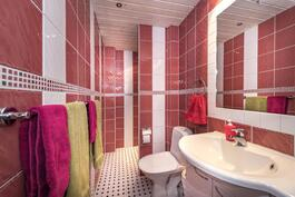 Yläkerran wc ja suihku.