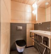 Näkymä uudistettuun upeaan wc-tilaan.