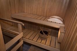 Siisti oma sauna