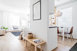Esittelyasunto C57, 3h, k, 60 m², sisääntulo