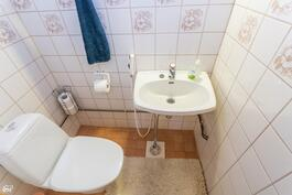 Kylpyhuoneen viereinen wc
