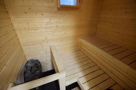 saunasta ikkuna takapihalle.