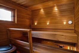 2016 uusittu sauna, Harvia hetivalmis kiuas/ Bastu förnyad 2016, Harvia heti valmis spis