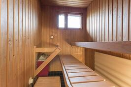 umpiaidank2_4-b8-3284-sauna