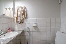 Erillinen wc I