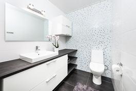 erillinen kaunis wc