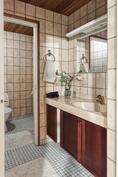 Sisääntulon wc ja erillinen käsienpesuhuone.