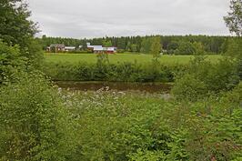 Aninkainen.fi Sydän asunnot Vaasa Helena Wörlin 044 231 6932  Pikkasen näkyy jokea