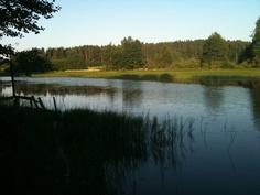 Rutajärven rannalla.