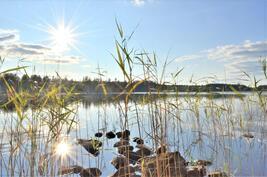 Järvimaisemaa Konnevedelle