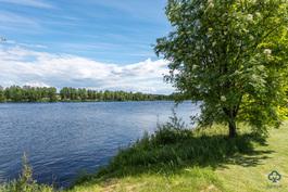Oulujoen rantaa