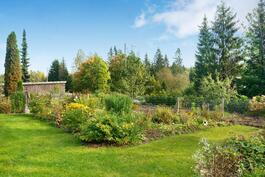 Vehreä puutarhamainen pihapiiri