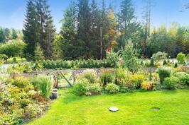 Kauniista kukkaloistosta voit nauttia kevät- ja kesäkauden ja jopa pitkälle syksyyn