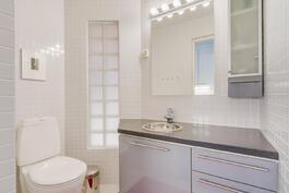Erillinen wc kodinhoitohuoneessa