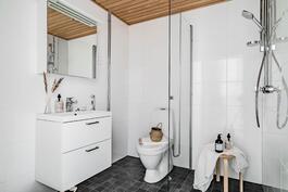 Esittelyasunto C60, 2h, k, s, 51 m², kylpyhuone