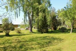 Mökin takapuolella olevaa tontin osaa - hyvinhoidettua nurmikkoa ja kaunista puustoa