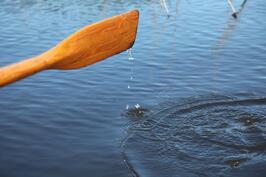 järvelle soutaen n.300m
