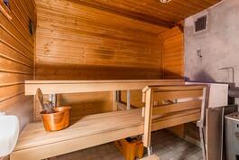 Sauna puukiukaalla / Bastu med vedugn