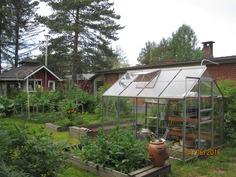 Puutarha ja kasvihuone