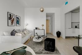 Loiston malliasunto A109 2h+kt 43,5 m2 + viherh. 4,5 m2: olohuone-keittiötila