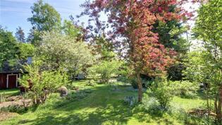 Pihapiirissä on paljon kauniita puita ja pensaita.