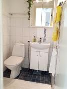 Alakerran pieni wc uusittu 2005