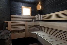 Tyylikäs sauna Harvian kiukaalla