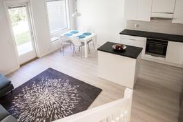 Yhtenäinen keittiö- olohuone