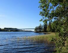 Kallaveden Vehmersalmea Kuopion ja sillan suuntaan rannasta