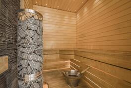 Sauna, jossa näyttävä pilarikiuas.