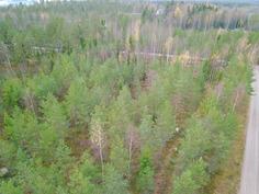 Määräala, Kaarnatien laitaa - Området, gränsen mot Barkvägen