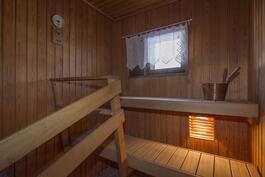 Ikkunallinen suuri sauna