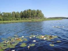 Uurasjärvi, Virrat, Kotala.