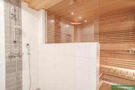 Tyylikäs saunaosasto
