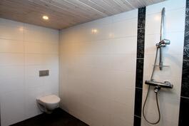 pesutiloissa suihkun lisäksi myös seinämalin wc-istuin.