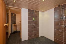 Kylpyhuone, sauna ja pukuhuone 2010