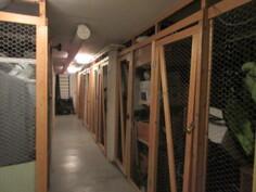 Huoneiston vaatehuoneen lisäksi varastotilaa löytyy huoneistokoht. häkkivarastosta ja ...